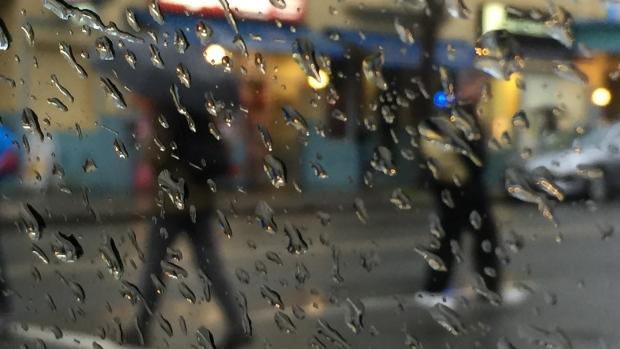 暴风雨明天继续!28000户停电!大温冬天提前了…
