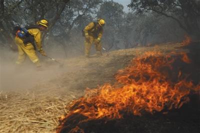 加州大火是非法移民纵火?ICE和地方警局吵起来