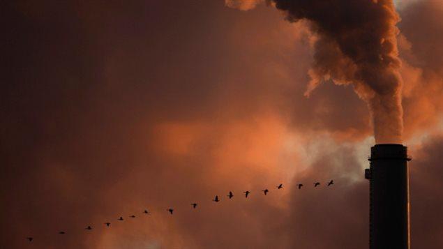 为躲雾霾来尊宝娱乐? 可这每年有7700人死于空气污染