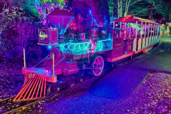 bright-nights-christmas-train.jpg.size.xxlarge.promo.jpg