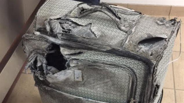 171221_lf277_rci-suitcase_sn635.jpg
