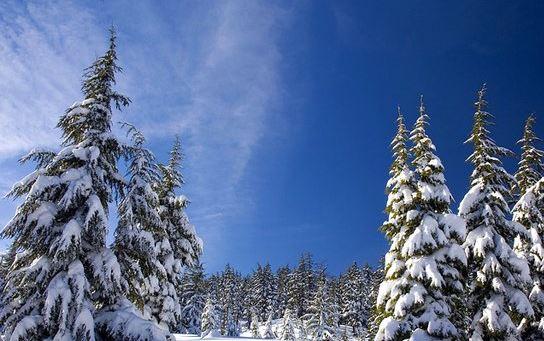 环境部向大温发降雪警告 最高降雪量15厘米