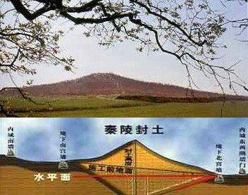 秦始皇陵地宫可能寻获了!线索是石榴树