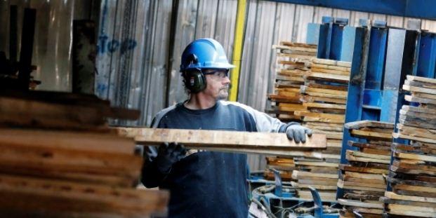 美国对加拿大软木需求继续强劲 涨价抵消关税影响