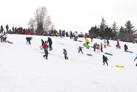 雪暴之后 温哥华公园成了免费滑雪场