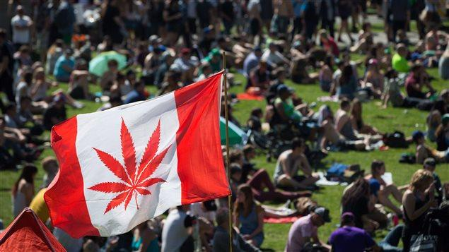 要赚大钱 优发国际一大麻公司将在纳斯达克上市