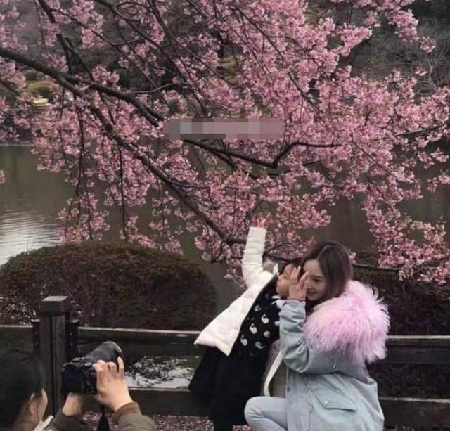 李小璐甜馨日本賞櫻未見賈乃亮 行程曝光