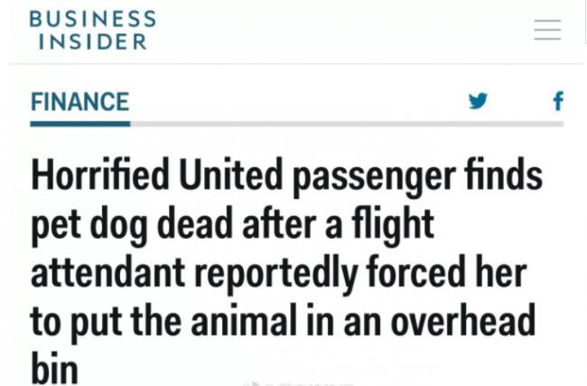 美联航又出事!逼乘客把狗关在头顶行李箱 结果..