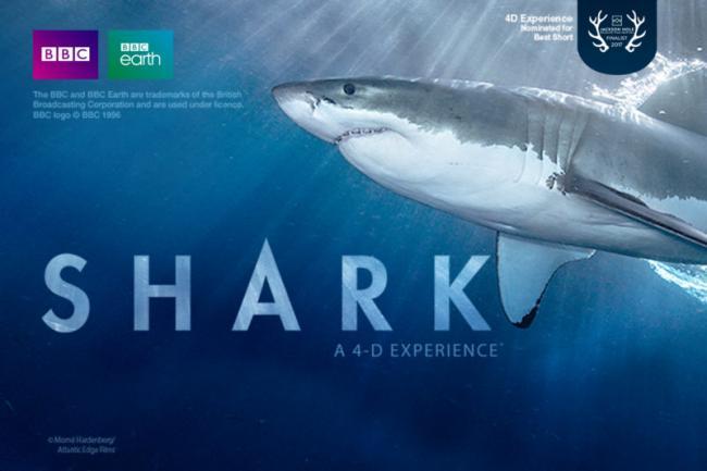 Shark-A-4D-Experience-e1519762211804.jpg