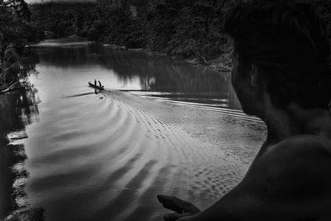 """亚马逊丛林这些默默无闻的""""守护者"""""""