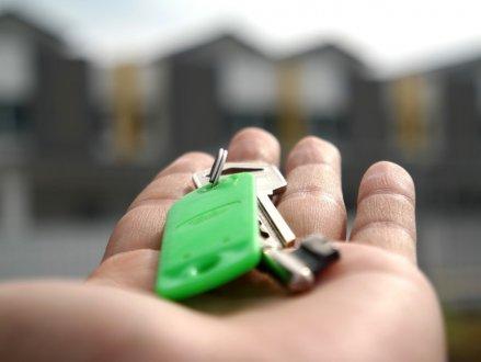 高贵林新房屋租赁项目正式动工 41个单位