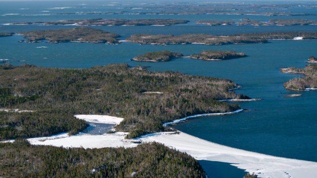 加拿大计划在大西洋沿岸开辟三个海洋生态保护区