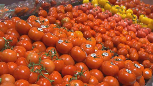 tomates-marche-canada.jpg