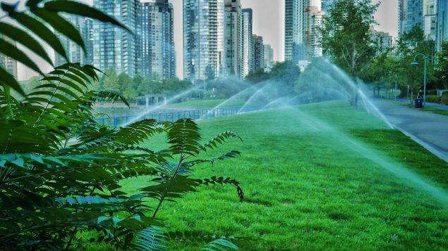 大溫限水令5月1日開始實施 自動澆水每周只能2天