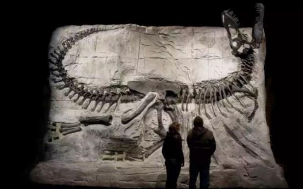 跨入侏罗纪!加拿大阿省的恐龙世界欢迎你