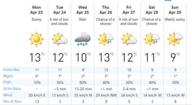 寒冬已去!多伦多终于迎来了春天