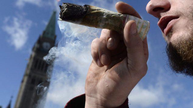 携带多少大麻算违法?警察都不知道