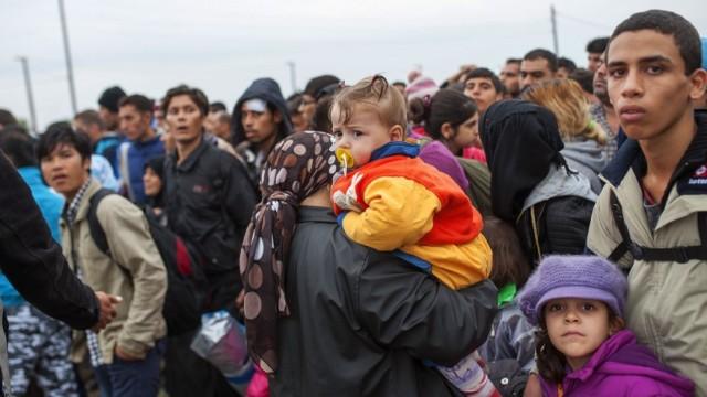 小土豆幡然醒悟:难民申请通过率创新低
