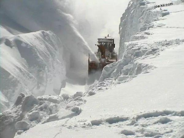 有冤情!加拿大东部今晚有30厘米+雪暴!