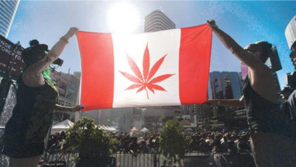 纽省开世界大麻大会 职场准备不足 缺有效测试法