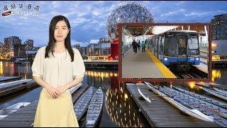优发国际快速移民通道,中国人数增近2倍