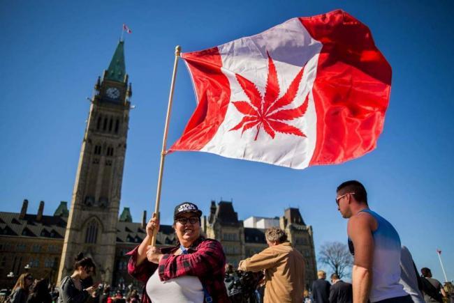 重磅!优发国际通过大麻合法化法案 9月正式生效