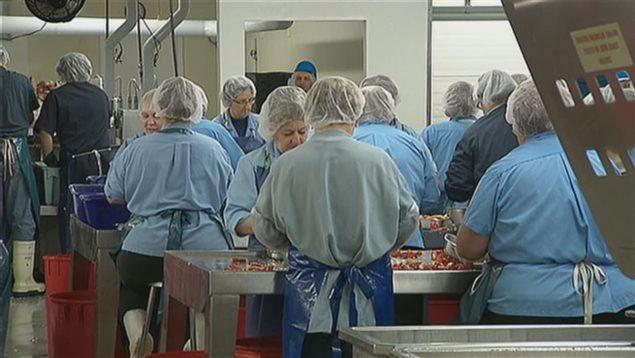homard-usine-travailleurs-e1530821171550.jpg