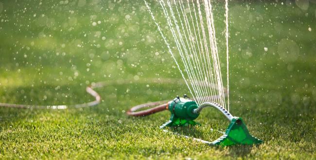 Sprinkler-984x500.jpg