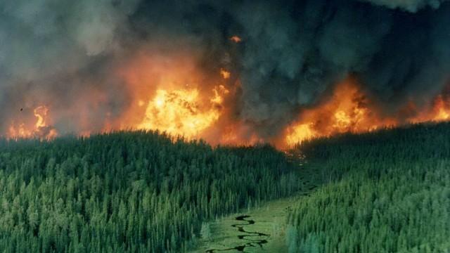 安省东北部森林大火肆虐已一周 仍未被扑灭