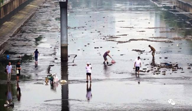 北京大雨后 一群人在护城河里捞鱼