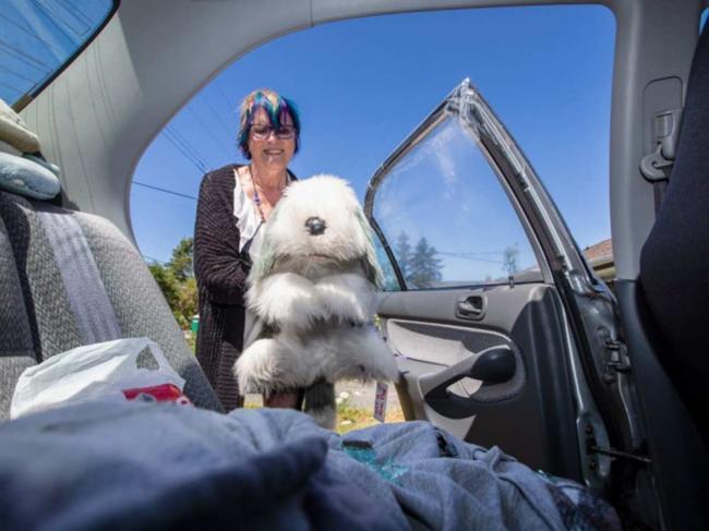 哭笑不得!夫妇砸车窗救狗 抱出来一看瞬间懵了