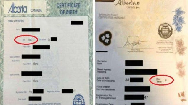 0726-certificate-e1532659372828.jpg