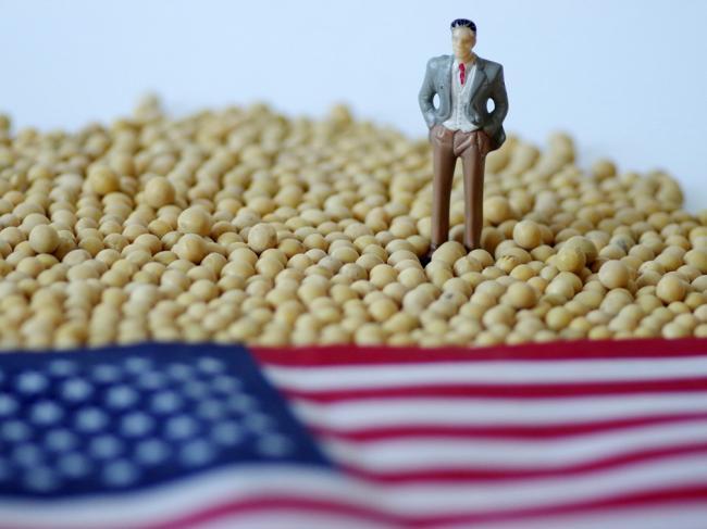 美媒:川普补贴政策遭抨击 美农户绝望