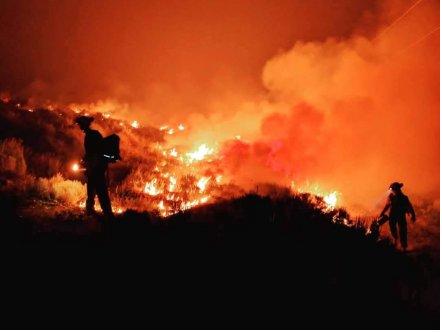 卑诗仍有552宗山火仍在焚烧  60宗为重大山火