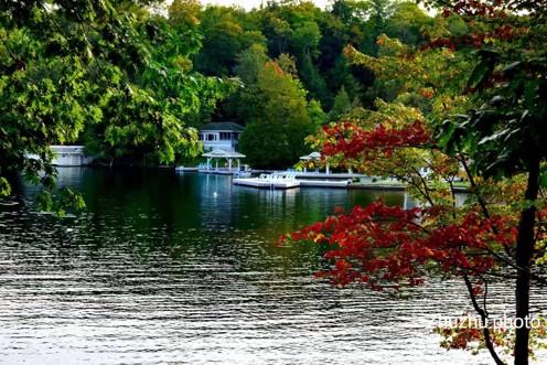 温哥华的秋,梵高笔下的一幅画