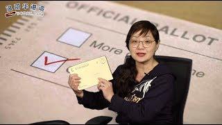 比例选举制和传统选举制利弊谈