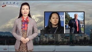 加国税局放大招!华裔夫妻偷逃税 6套豪宅被没收