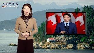 不要欺负加拿大的善良,杜鲁多最新表态