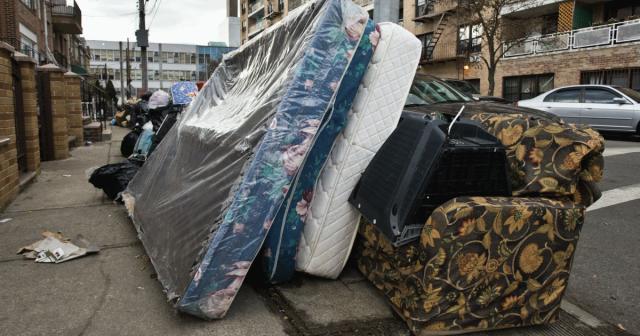 可怕!多伦多成全国床虫问题最严重地区