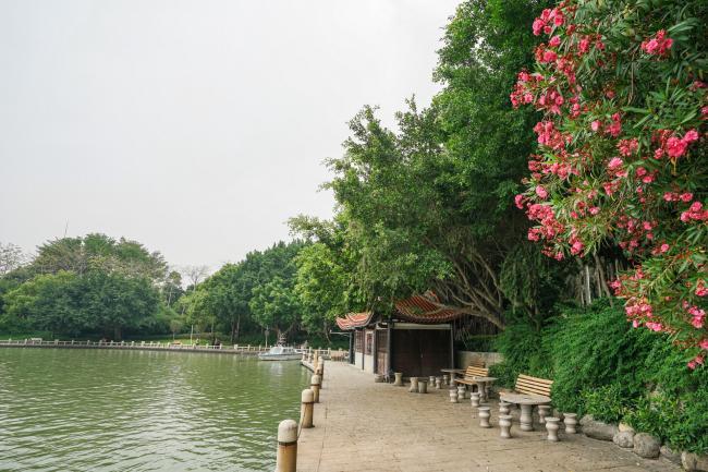 福建泉州也有一座西湖 跟杭州西湖一样免费