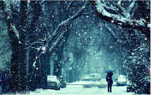 温哥华一日的璀璨--雪,雨,晴的交织