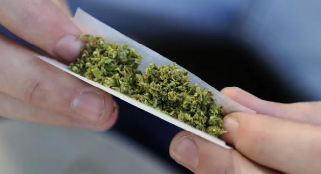 加拿大统计局:合法化把大麻价格推高了 17%
