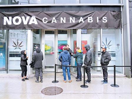 合法大麻售价高供应不足 非法市场当道