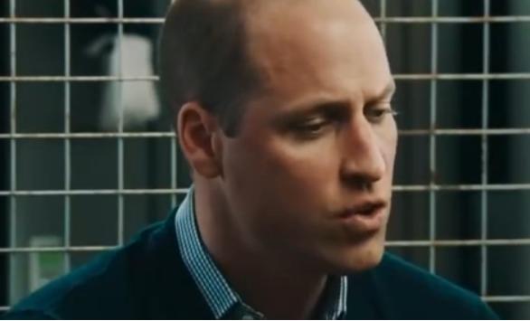 威廉王子首谈戴安娜王妃去世:前所未有的痛苦