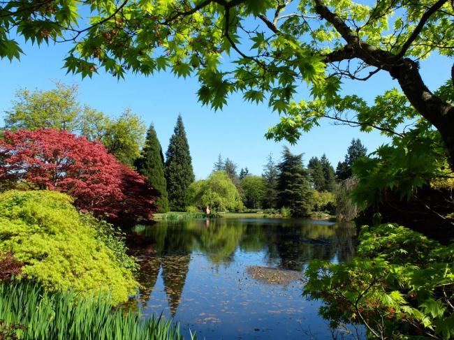 大温各社区 1公里范围内有多少个公园?
