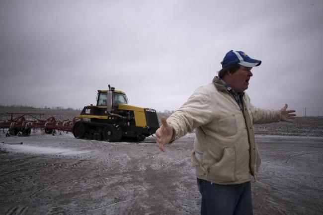 中方停购美农产品 加拿大豆农:我也没卖出去