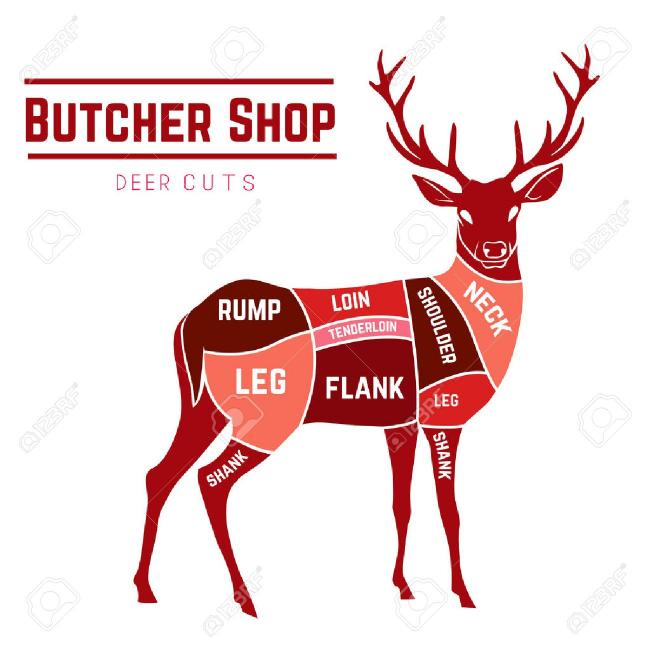 39591634-deer-meat-cuts-with-elements-and-names-in-color-for-butcher-shop.jpg