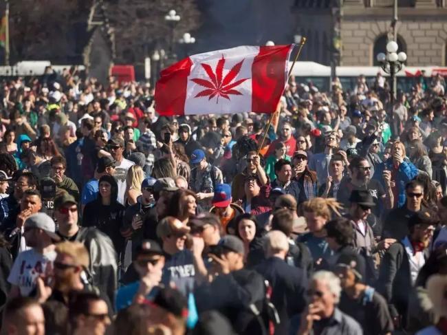 大麻玩出花?建8000尺场地 专门聚众吸大麻