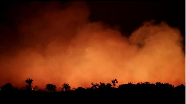 巴西总统派军队灭火 专家指亚马逊浩劫是人祸