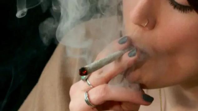 加拿大大麻合法化没影响生产力 雇主要求严格